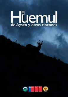 EL HUEMUL DE AYSEN Y OTROS RINCONES