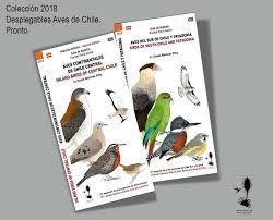 AVES DEL SUR DE CHILE Y PATAGONIA DESPLEGABLE