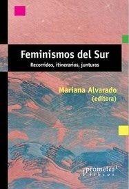 FEMINISMOS DEL SUR