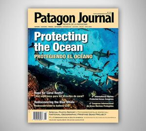 PATAGON JOURNAL N 15